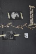 Sticker branche de houx doré, SHANNA MURRAY