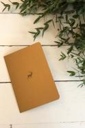 Carte postale + enveloppe Renne