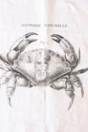 """Napkins """"Crab"""" white"""