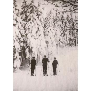 "Torchon ""Forêt"" blanc"