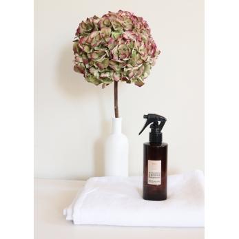 Interior spray : Eucalyptus and Mint